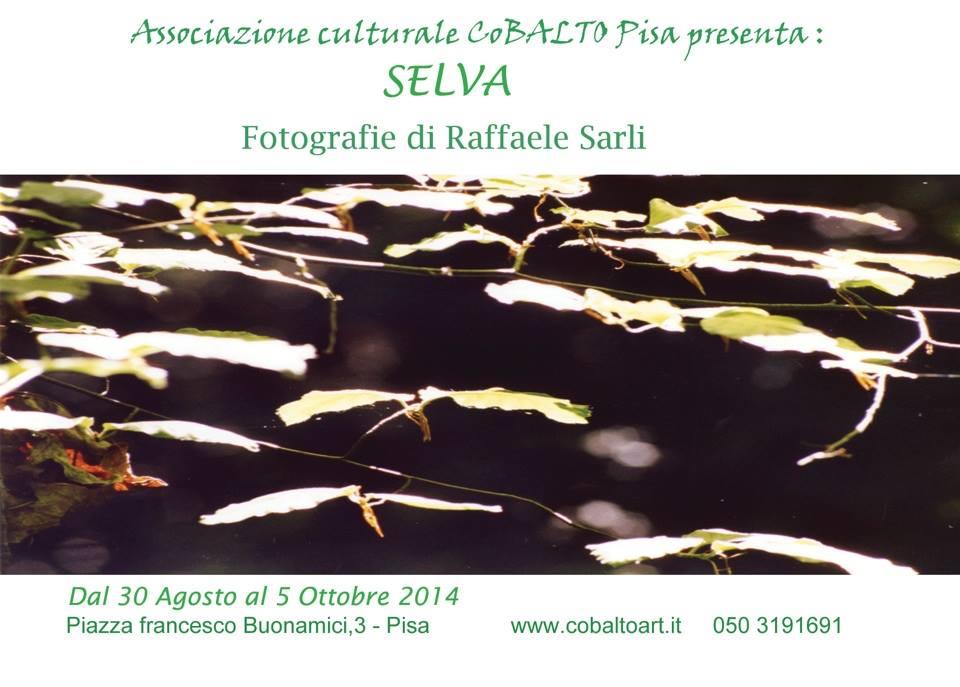 Raffaele Sarli